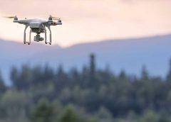 Interforst Programm | Digitalisierung im Wald und in der Forstwirtschaft| IHM | (c) iStock