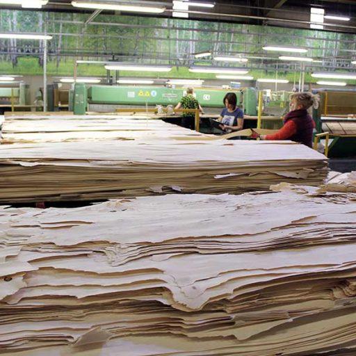 Dem Holz-Carpaccio © IFN, Möhring Gruppe