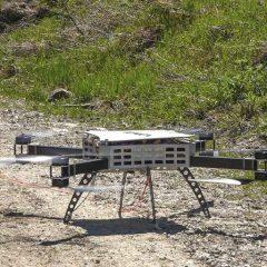 Kommt ein Wäldchen | Drohnen © IONICA/Studio Kopfsache