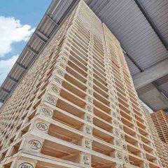 Seit Jahresbeginn müssen Transportmittel aus Holz ohne Ausnahme dem ISPM 15-Standard entsprechen. Foto: EPAL